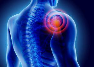 Ortho RTi Initiates Pivotal Study on Ortho-R