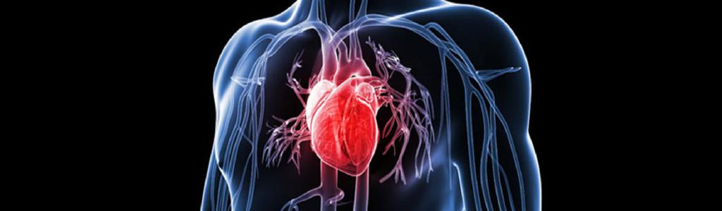 Angioplasty Procedure | iData Research